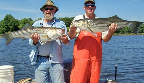 marine licenses and permits | marine | new hampshire fish and game