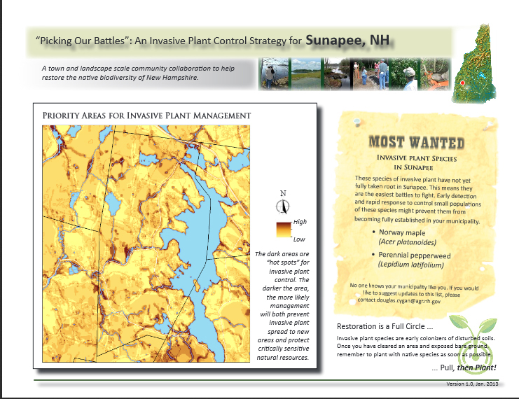 Planning Successful Invasive Plant Management Projects | New ...