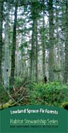 Lowland Spruce-fir forests
