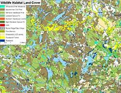 Wap Natural Resource Inventory Wildlife New Hampshire